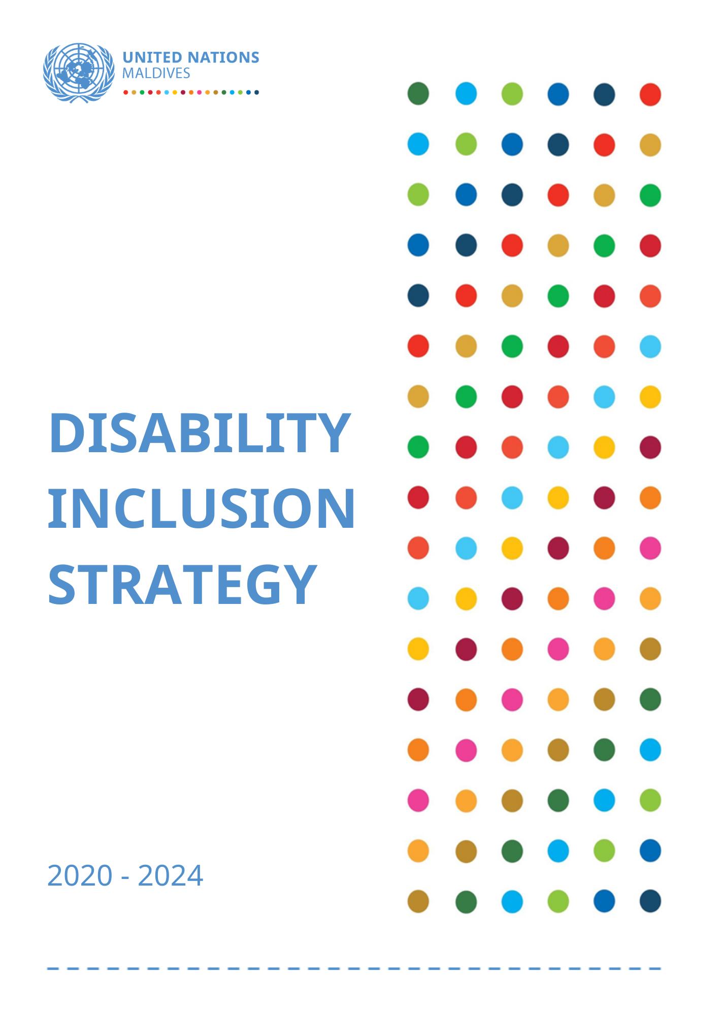 UN Maldives Disability Inclusion Strategy